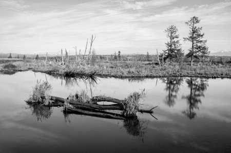 Característica del agua, estanque, blanco y negro. Foto de archivo - 36866187