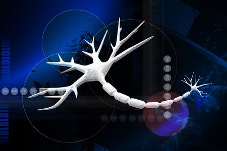 brainstem: Digital illustration of Human neuron cell rendering in 3d on digital background Stock Photo