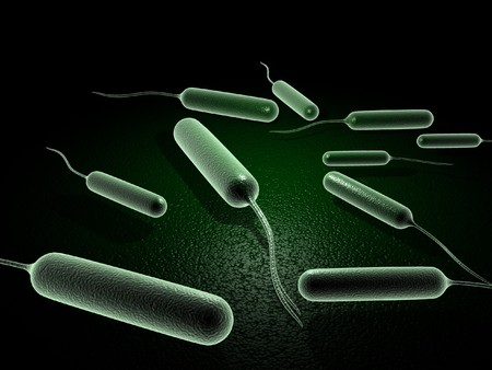 Digital illustration of coli bacteria in 3d on digital background Stock Illustration - 6937498