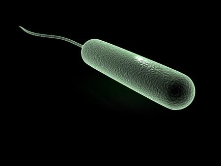 Digital illustration of coli bacteria in 3d on digital background Stock Illustration - 6937113
