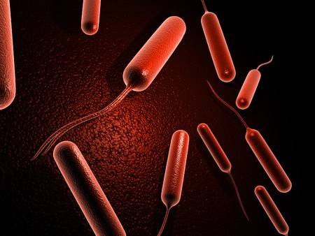 Digital illustration of coli bacteria in 3d on digital background Stock Photo