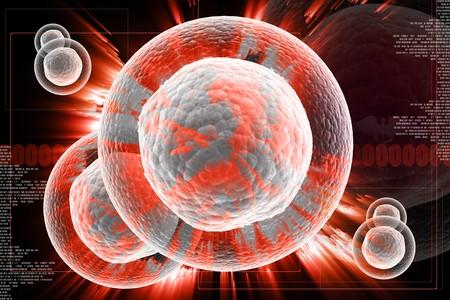 clonacion: Ilustración digital de CELL con NUCLEUS en 3d sobre fondo digital Foto de archivo