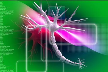 cellule nervose: illustrazione 3D del neurone di cellule nervose astratta rendering grafico