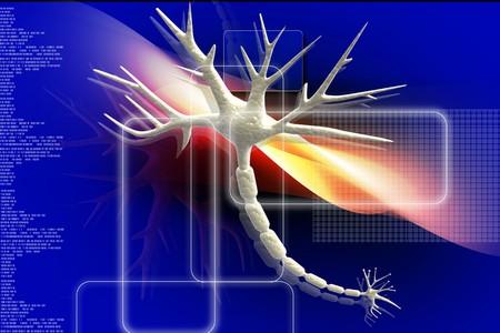 3d Illustration of neuron nerve cells abstract graphic render illustration