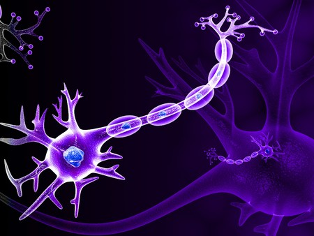 inteligencia emocional: NEURONA