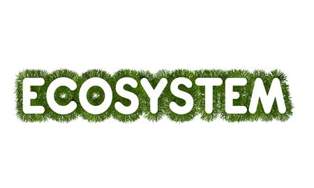 ecosystem: Ecosystem title with grass arround Stock Photo