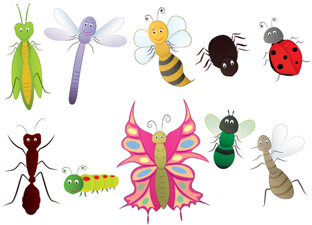 Insect cartoon set Vector