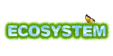 ecosystem: Ecosystem