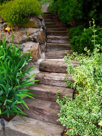 Wooden Stairway in Park