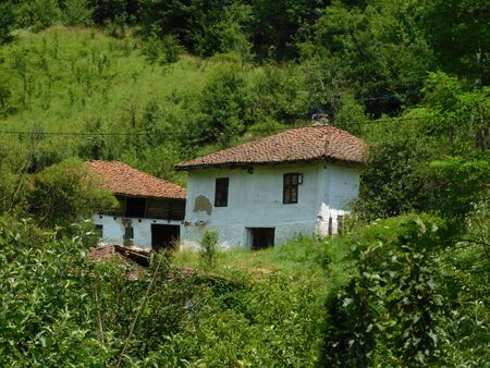 An old house on a hill surrounded by the forest, behind it is a old barn. Stock fotó