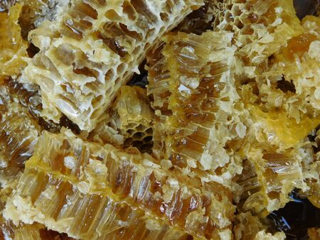 a picture of a lot of honeycombs
