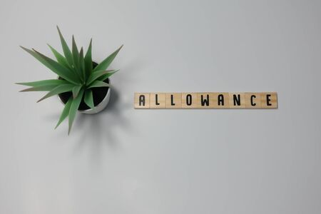 The word Allowance written in wooden letter tiles on a white background.  Concept forbidden, restrict and prohibit in business.