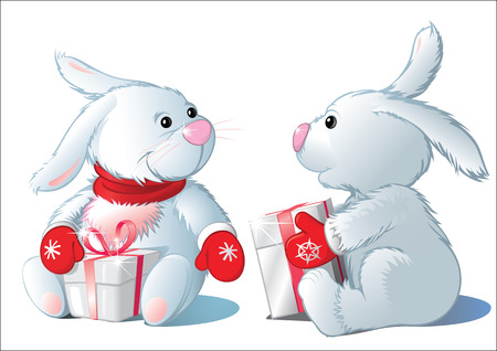 two rabbit with gifts, isolated Vector