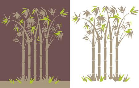 bamboo Reklamní fotografie - 76484984