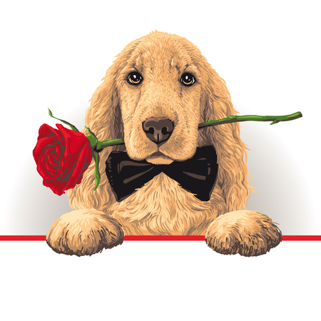 Dog with a Red Rose in His Mouth Ilustrace