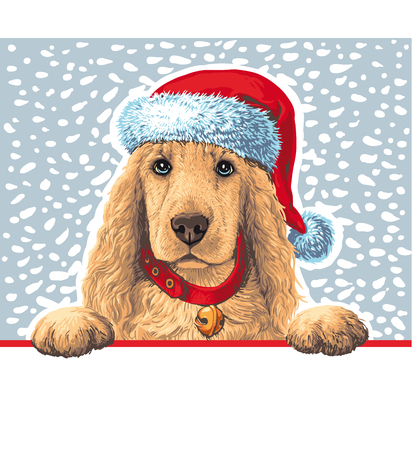 Dog sitting Ñ–n Santa hat