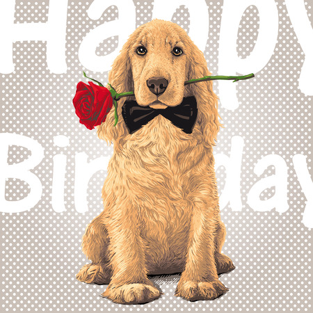 Golden Cocker Spaniel Dog sitting with a red rose in his meht Иллюстрация