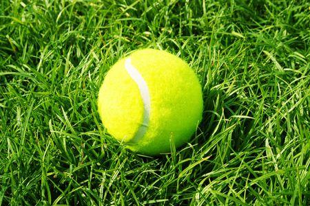 tennis ball in grass court photo