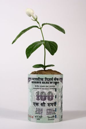 a 100 rupee indian currency note with a growing plant  photo