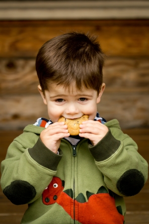 Photograph of a cute, brown-haired little boy in a green sweatshirt eating a cookie Reklamní fotografie