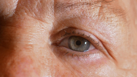 portrait of an old woman, grandmother,  looking at the camera, macro eyes