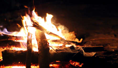 Summer camping fire in the forest on a black background in the night, free space for