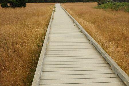 Boardwalk At MacKerricher State Park Reklamní fotografie
