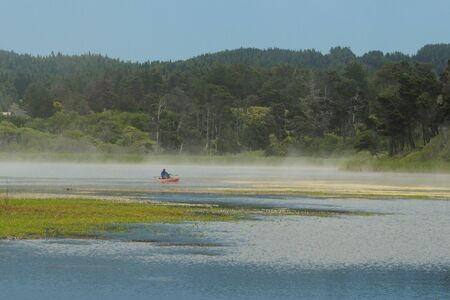 Foggy Lake At MacKerricher State Park Reklamní fotografie