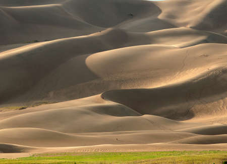 Rolling Sand Dunes In The Golden Late Afternoon Sunlight At Great Sand Dunes National Park On A Sunny Summer Day Standard-Bild