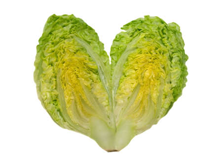 lettuce heart Stock Photo