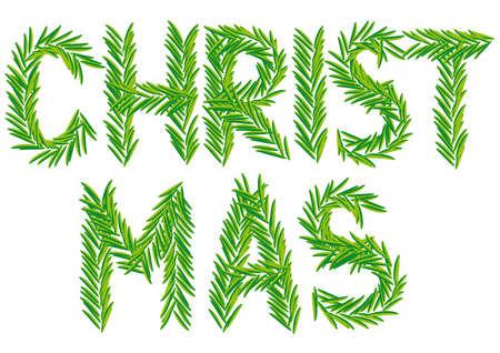 Christmas fir branch, xmas card, vector Illustration