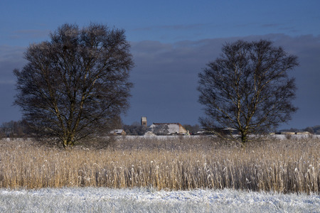 snowcovered: The church from the dutch village Wijckel in a snowcovered landscape visible through two trees