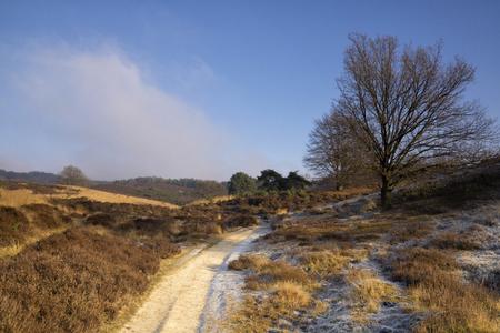posbank: Sandy road near the Posbank