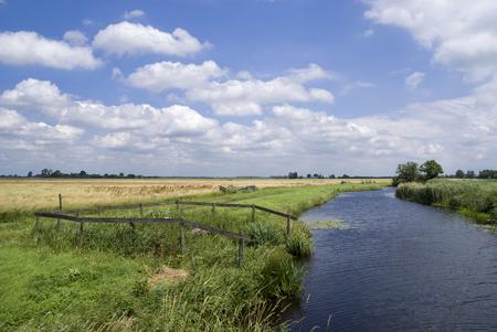 Landscape near Bleskensgraaf