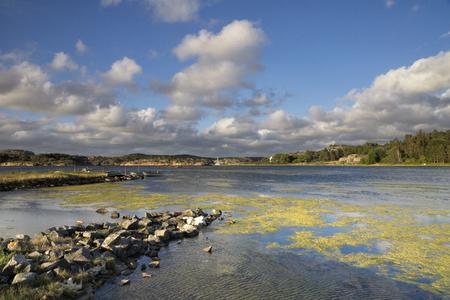 Coast near Havstenssund 版權商用圖片