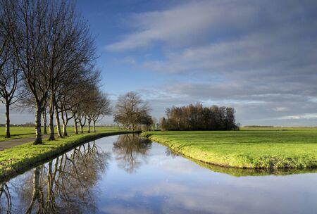 Trees reflecting in a pond 版權商用圖片