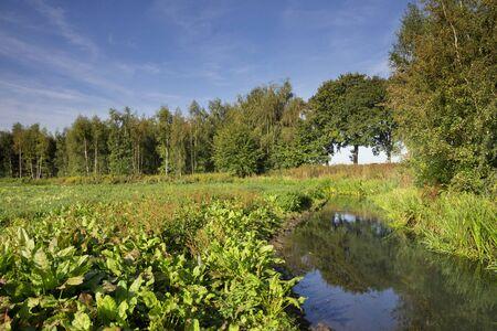 The Itterbeek river