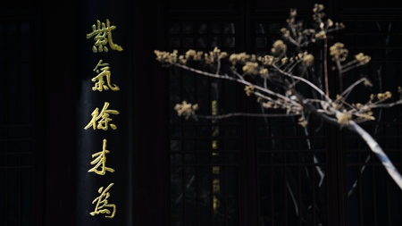 academy: Yunlong Academy of Classical Learning