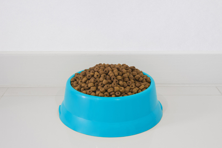 blue bowl with dry food for dog or cat in clear background with copy space.