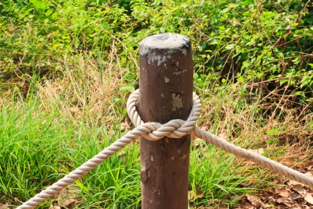 The knot of thick rope tied around a wooden stake