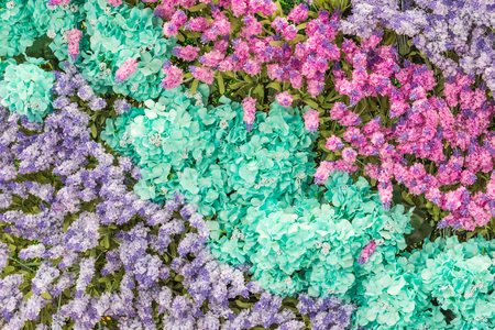 Flowers colorful for decorate in celebration background.