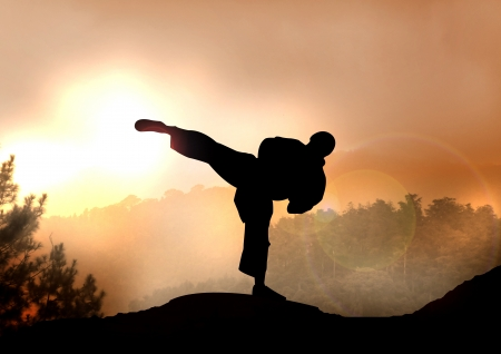 A Stock Illustration of Karateka Training on Mountain