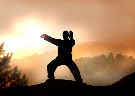 tai chi: Stock Illustration of Tai Chi on Mountain Stock Photo