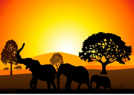 Stock Illustration of Elephants at Safari Illustration