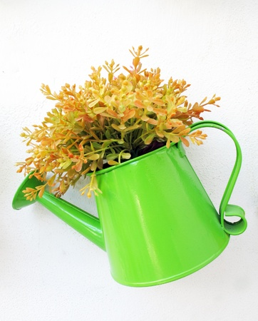 green watering can to be flowerpot photo