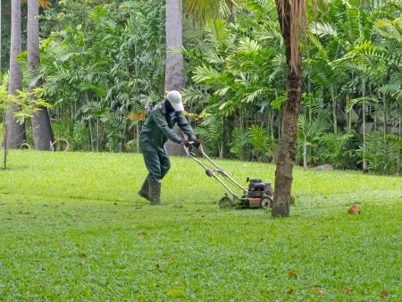 unidentified man using lawnmower cutting grass on field.  Stock Photo