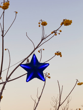 Beam from star on the branch