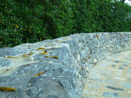 geschwungene linie: Die gekr�mmte Linie von gr�nen B�umen und Steinmauern.