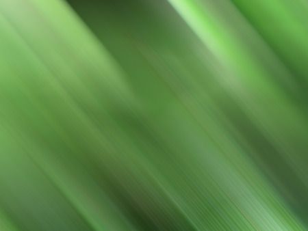 transverse: Abstract dark green background gradient in transverse motion.