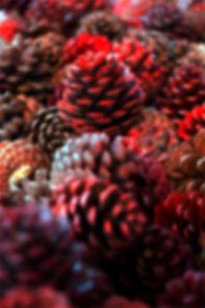 Blurry background of red pine cones decoration for Christmas.